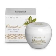 Osmanthus Body Cream