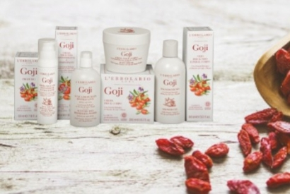 Goji: the treasure of the red diamond